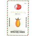 ミニトマトの種 ナポリターナカナリア 8粒 ( 野菜の種 )