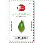 ミニトマトの種 サリーナエメラルド 小袋(約8粒) ( 野菜の種 )