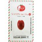 ミニトマトの種 シシリアンルージュTY 8粒 ( 野菜の種 )