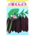 実取エンドウの種 紫えんどう 20ml