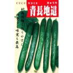 キュウリの種 青長地這 小袋 ( 野菜の種 )