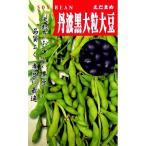 大豆種 丹波黒大豆 ( だいずの種 ) 小袋  1dl(約75粒