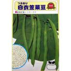 つるありインゲン豆の種 白衣笠 1dl