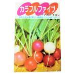 野菜のタネ 根もの 廿日大根