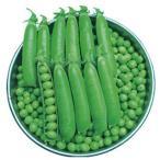 実取エンドウの種 南海緑 20ml