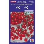 ミニトマトの種 ぺぺ DF 30粒 ( 野菜の種 )
