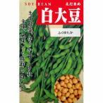 大豆種 白大豆 (ふくゆたか) ( だいずの種 ) 小袋 約1