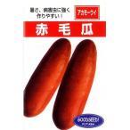 沖縄赤毛瓜 (ウリの種) 小袋 約5ml