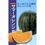 スイカの種 サマーオレンジB (ベビー) 8粒 ( 野菜の種 )