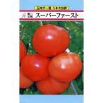 大玉トマトの種 スーパーファースト 30粒