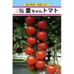 ミニトマトの種 愛ちゃん 約14粒 ( 野菜の種 )