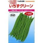 つるありインゲン豆の種 いちずグリーン 50粒