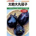 茄子の種 ナス太助大丸 1ml