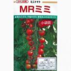 ミニトマトの種 MRミミ 小袋(35粒) ( 野菜の種 )