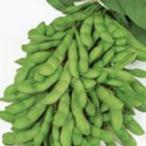 枝豆の種 夏の装い 1L ( 野菜の種 )