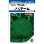 ブロッコリーの種 メガドーム L5千粒 ( 野菜の種 )