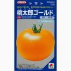 大玉トマトの種 桃太郎ゴールド 1,000粒 ( 野菜の種 )