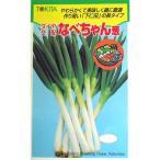 ネギの種 なべちゃん葱 2dL缶 ( 野菜の種 )