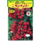 ミニトマトの種 サンチェリープレミアム 小袋(15粒) ( 野菜の種 )