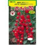ミニトマトの種 サンチェリー250 小袋(20粒) ( 野菜の種 )