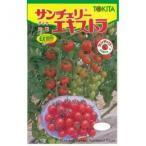 ミニトマトの種 サンチェリーエキストラ 小袋(20粒) ( 野菜の種 )