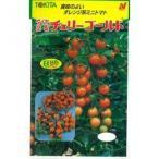 ミニトマトの種 チェリーゴールド 100粒 ( 野菜の種 )