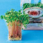 スプラウトの種 そばの芽 の種 小袋 約70ml