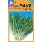 早生はかた千緑水菜 (水菜、京菜の種) 2dl
