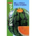 スイカの種 サマーオレンジM (ミドル) 8粒 ( 野菜の種 )