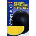 スイカの種 3Xブラックムーン 10粒 ( 野菜の種 )