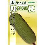 ヘチマの種 味枕  小袋 約10粒 家庭菜園 緑のカーテンにおすすめの 野菜種♪