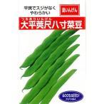 つるありインゲン豆の種 大平莢尺八寸菜豆 20ml