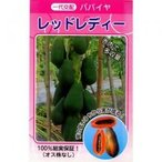 パパイヤの種 レッドレディー 20ml(約200粒)