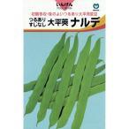 つるありインゲン豆の種 すじなし大平莢ナルデ 20ml