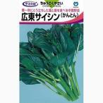 広東サイシンの種 小袋(約5ml) その他 葉菜類の種 ( 野菜の種 )