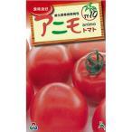 大玉トマトの種 F1アニモ 1,000粒 ( 野菜の種 )