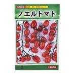 ミニトマトの種 ノエルトマト 30粒 ( 野菜の種 )