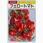 ミニトマトの種 フェロー 40粒 ( 野菜の種 )