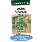 オクラの種 ダビデの星 小袋 約2ml(約20粒) 家庭菜園 ガーデニングにおすすめの 野菜種♪