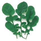 ベビーリーフの種 ルッコラ 小袋 約1dl