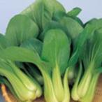 ちんげん菜の種 青冴 ペレット5000粒 ( 野菜の種 )