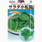 サラダ小松菜 (小松菜の種) 小袋 約20ml