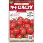 ミニトマトの種 キャロルロゼ 小袋 ( 野菜の種 )
