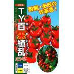 ミニトマトの種 TY百果繚乱 20粒 ( 野菜の種 )