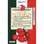 トマトの種 シシリアンルージュ 1,000粒