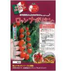 ミニトマトの種 ロッソナポリタン 8粒 ( 野菜の種 )