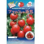 中玉トマトの種 アマルフィの誘惑 1,000粒