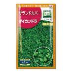 緑肥 ダイカンドラ 小袋(約20ml)