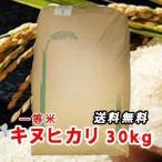 令和元年 新米 三重県産 キヌヒカリ (きぬひかり) 玄米 一等米 30kg 30キロ 【送料無料】 令和1年産 お米
