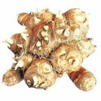 里芋(さといも) 予約 八ツ頭 種芋 1kg(1個入り)